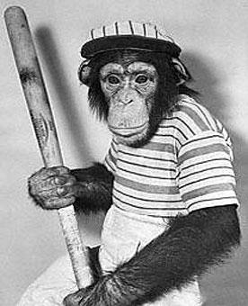 Monkey_Holding_Baseball_Bat.jpg